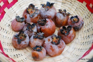 Safe Persimmons