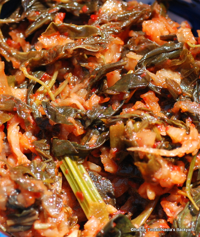 Native edible greens, korean kimchi